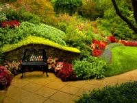 Garden Background Hd Download