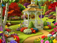 Garden Hd Background Photo
